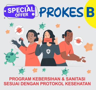 PROKES B