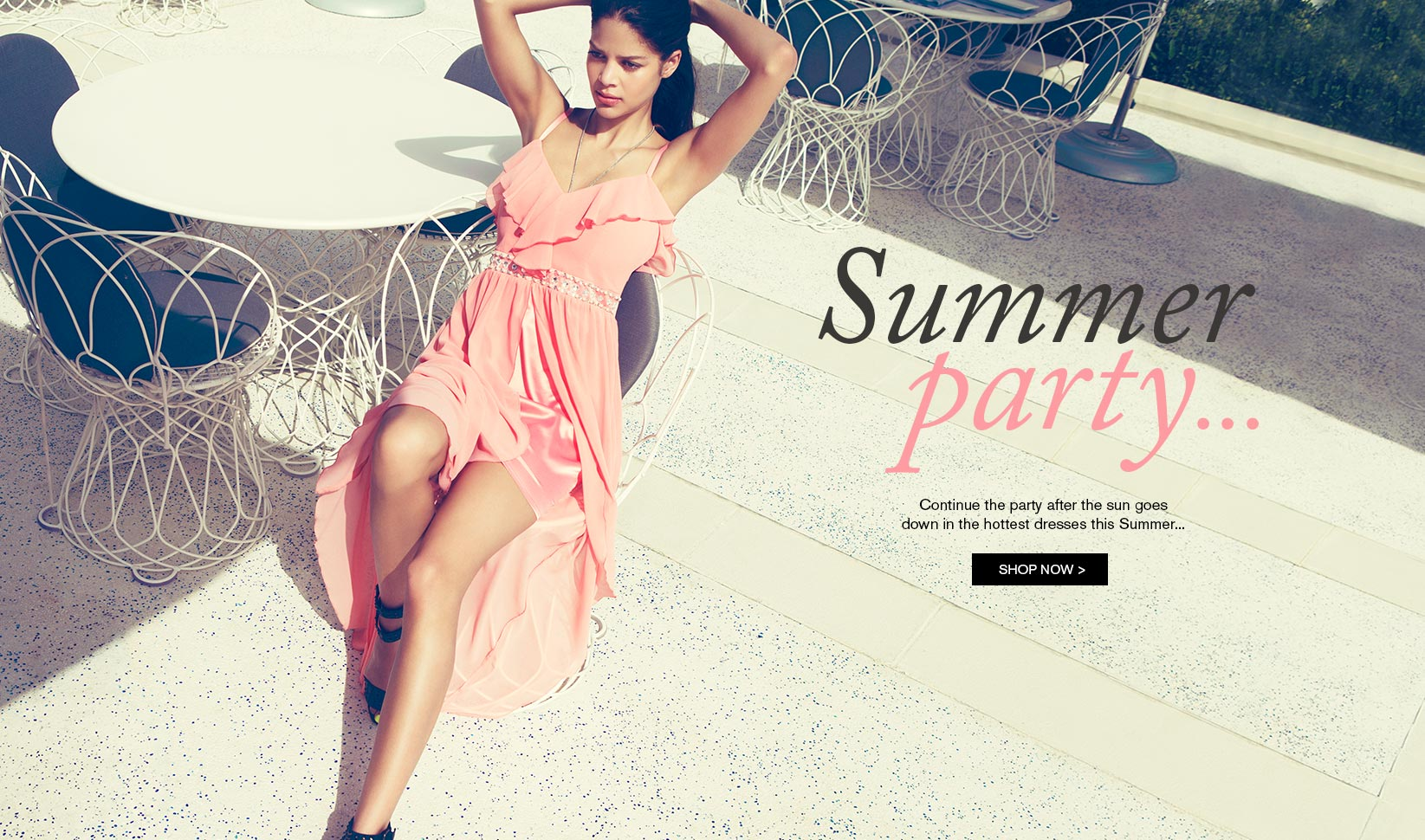 Summer Party image